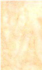 Latte Batik, Hoffman Fabrics