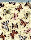 Nature's Poetry, Butterflies, Robert Kaufman