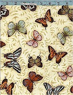 Natures Poetry Butterflies, Robert Kaufman