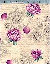 Garden Romance, Victorian Rose, Hoffman