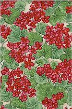 Blooms Geraniums, Hoffman International