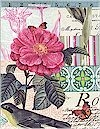 Belle Rose, Pink, Michael Miller