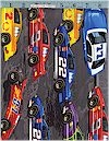 Nascar Cars, Timeless Treasures