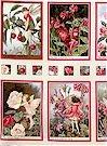 Fairy Blocks, Blossom, Michael Miller