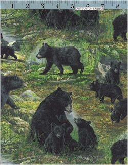 Woodland Black Bears Hautman Bros For Vip Cranston