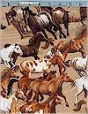 Wild West Horses, Benartex