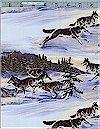Wild Run Wolves, Elizabeth Studios