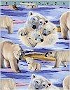 Lifelike Polar Bears Elizabeth Studios