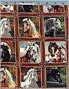 Small Horse Blocks, Robert Kaufman