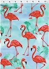 Flamingo Paradise, Robert Kaufman